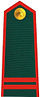 Vietnam Border Defense Force Sergeant.jpg